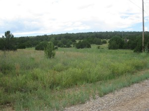 Sundance Mountain Ranches - Lot 4