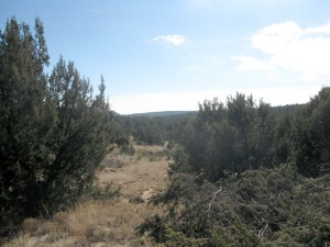 Sundance Mountain Ranches - Lot 239 - 123 Sundance Kid